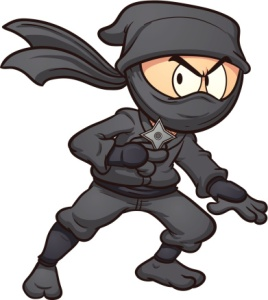 This is not the worst ninja. This is an awesome ninja.