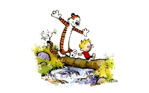 Desgins-comics-calvin-hd-and-hobbes